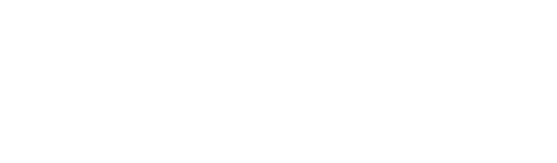 Horizon Healthcare Partners